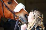 COVID 19 Peut-on s'occuper de son cheval s'il se trouve en dehors de la zone de 10km