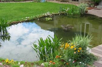 Cascade pour bassin de jardin : comment l'installer ?