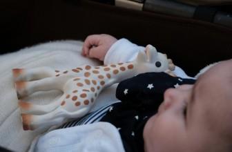 Sophie la girafe : quelle est la composition de ce jouet culte ?