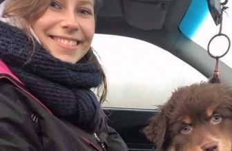 Villefranche : Décès d'une étudiante vétérinaire dans son lieu de travail